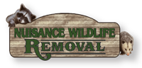 Nuisance Wildlife Removal of Florida