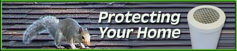 Protecting Your Home with Plumbing Vent Covers